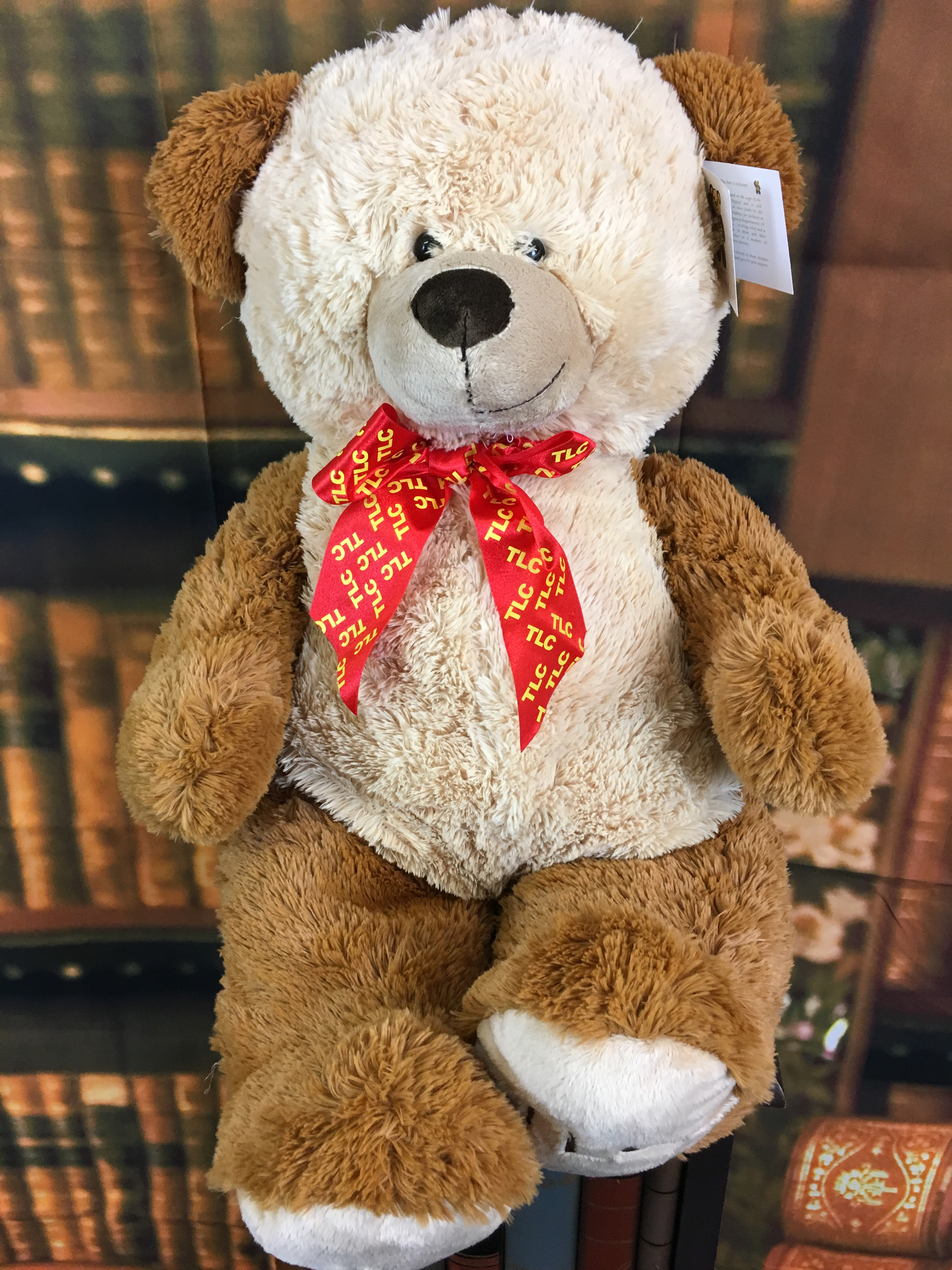 25 inch Teddy Bear